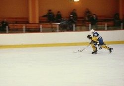 Two hockey players at a rink
