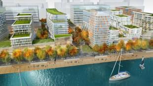 Bayside waterfront neighbourhood