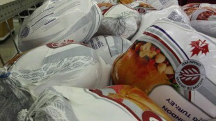 Honest Ed's gives away over 10,000 pounds of free turkeys