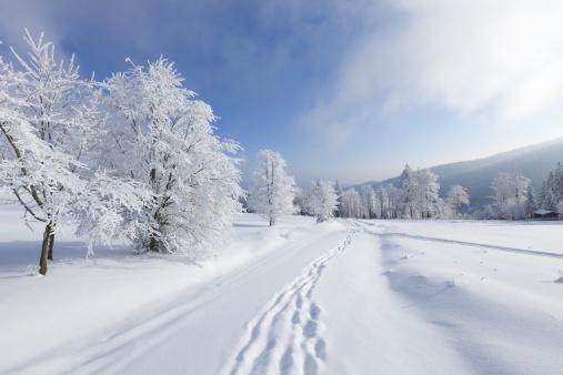 Almanac calls for colder-than-normal winter in Southern Ontario