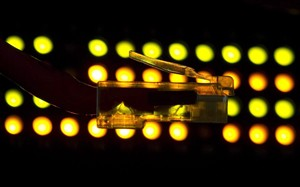 Lights on an internet switch illuminate a network cable in Ottawa, February 10, 2011. THE CANADIAN PRESS/Adrian Wyld