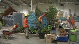 Direct Energy Centre turns into garden paradise for Canada Blooms