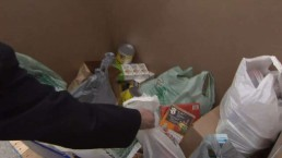 BT & CityNews team up for Daily Bread spring food drive