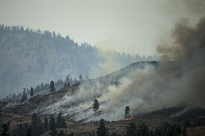 The Carlton Complex fire burns on the side of a mountain on July 20, 2014 in Carlton, Washington. The Fires have swept the region covering over 215,000 acres of land and destroying over 100 structures. Firefighters from all over the country have been sent to the area in order to try and contain it. (AP Photo/The Seattle Times, Maddie Meyer) SEATTLE OUT, USA TODAY OUT, MAGAZINES OUT, TELEVISION OUT, SALES OUT. MANDATORY CREDIT TO: MADDIE MEYER / THE SEATTLE TIMES.