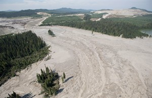 A aerial view shows the damage caused by a tailings pond breach near the town of Likely, B.C. Tuesday, August, 5, 2014. The B.C. government says water testing results following a massive mine tailings spill are within guidelines for drinking water and aquatic life.THE CANADIAN PRESS/Jonathan Hayward