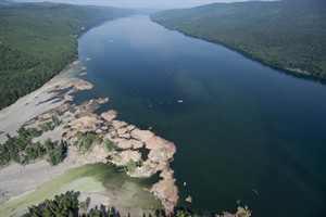 Contents from a tailings pond is pictured going down the Hazeltine Creek into Quesnel Lake near the town of Likely, B.C. Tuesday, August, 5, 2014. THE CANADIAN PRESS/Jonathan Hayward