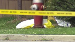 Grisly discovery in Brampton