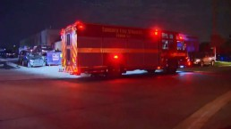Several vehicles damaged in auto body shop fire in North York