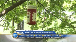 Morning Webcast: August 13, 2014