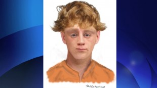 Composite sketch of suspect wanted in connection with Don Mills sexual assault, May 25, 2015. TORONTO POLICE SERVICES