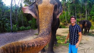 Christian LeBlanc is seen standing beside an elephant on Koh Phangan Island when it grabbed the camera and took a selfie. INSTAGRAM/Christian_lebrlanc