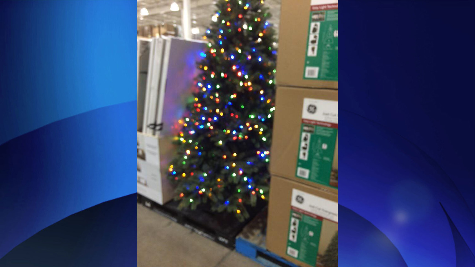 christmas decorations seen at costco