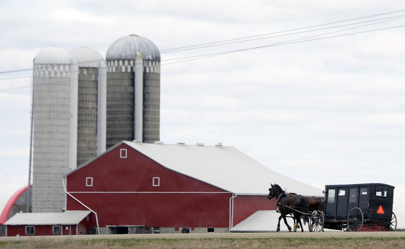 Amish give up on pricey Ontario, head for new life on Prince Edward ...