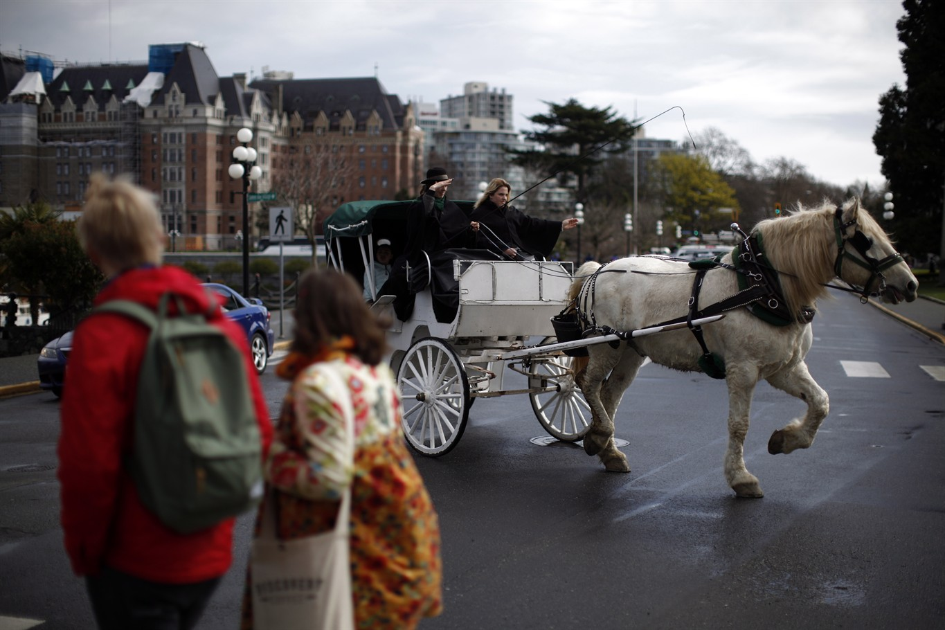 After the Ride is Over: Evaluating the Welfare of Carriage Horses