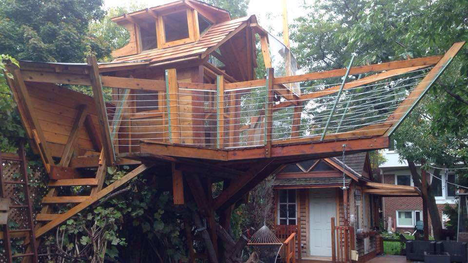City rejects appeal to keep giant Bloor West treehouse up
