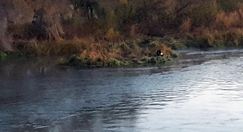 Crash knocks man off bridge before he falls into the river