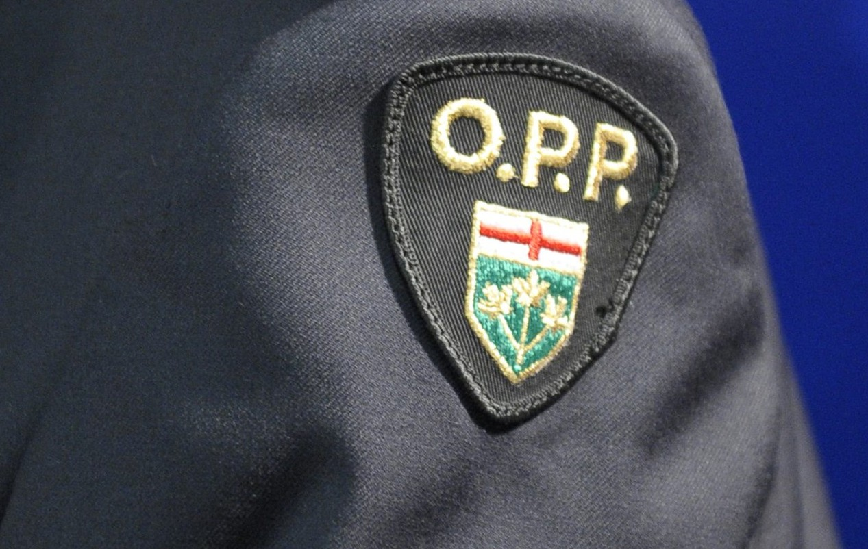 Thunder Bay, Ont., police chief charged with breach of trust, obstructing justice