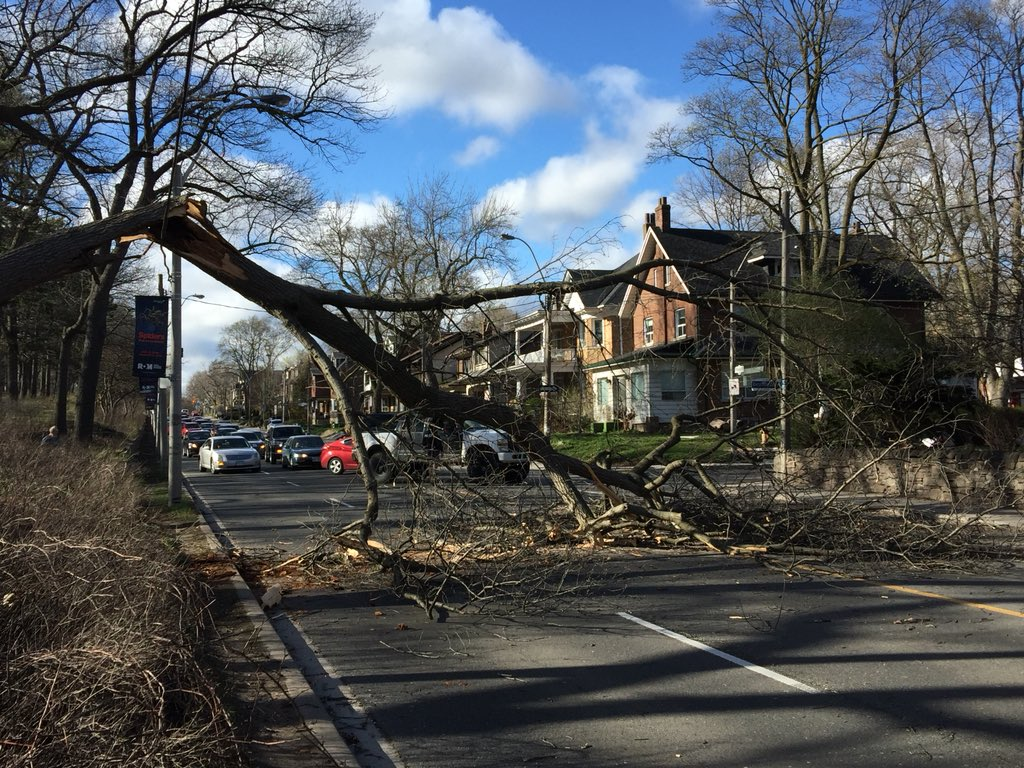 2 dead, 200000 without power following disastrous Ontario wind storm