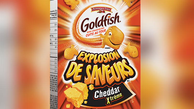 Pepperidge Farm voluntarily recalls Goldfish crackers for salmonella risk