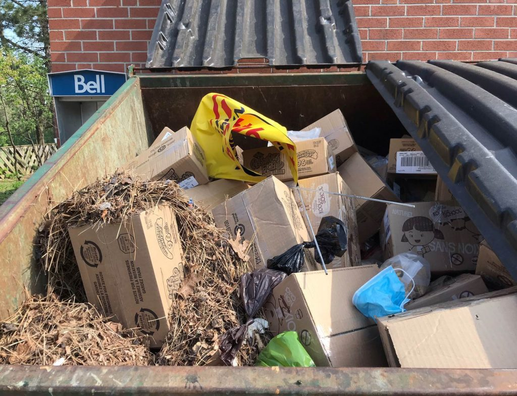 Food rescue fail: how these boxes of food landed in a school dumpster