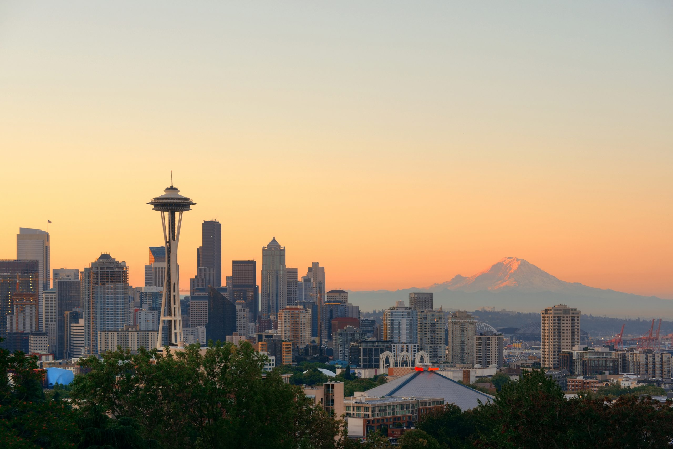 Cougars, Eagles, Seals? New Seattle NHL team could be ...